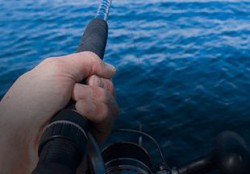 fishing tackle and gear
